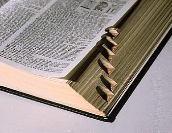 encontrar palabra empiecen gue: